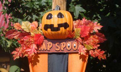 Knott's Camp Spooky