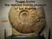 Natural History museum in Los Angeles