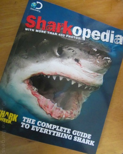 sharkopedia book