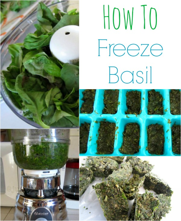how to freeze basil at home