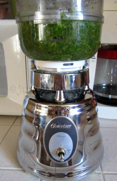 Recipe for freezing basil