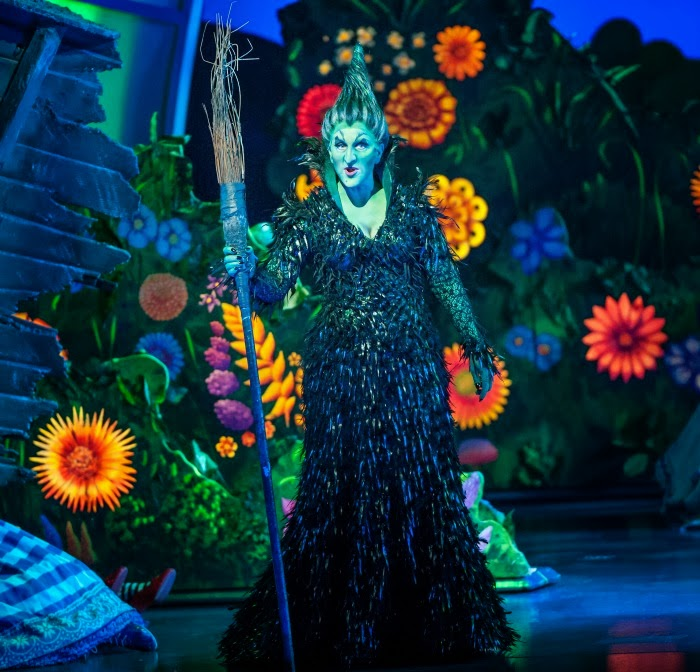 Witch in The Wizard of Oz at Segerstrom Center | LivingMiVidaLoca.com #WizardOC