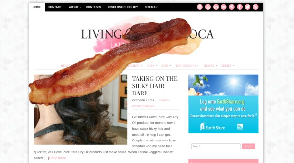 add bacon to a website