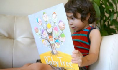 boy reading The Baby Tree
