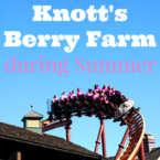 tips-for-visiting-knotts-berry-farm-during-summer