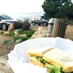 Picnic at Point Loma
