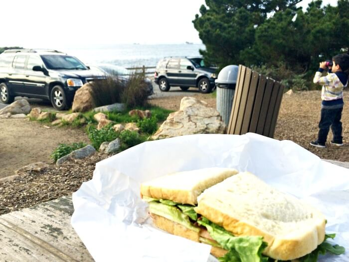 Picnic at Point Loma
