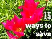 tips on saving energy at home