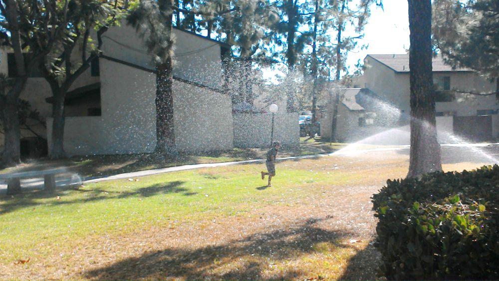 boy running through sprinklers