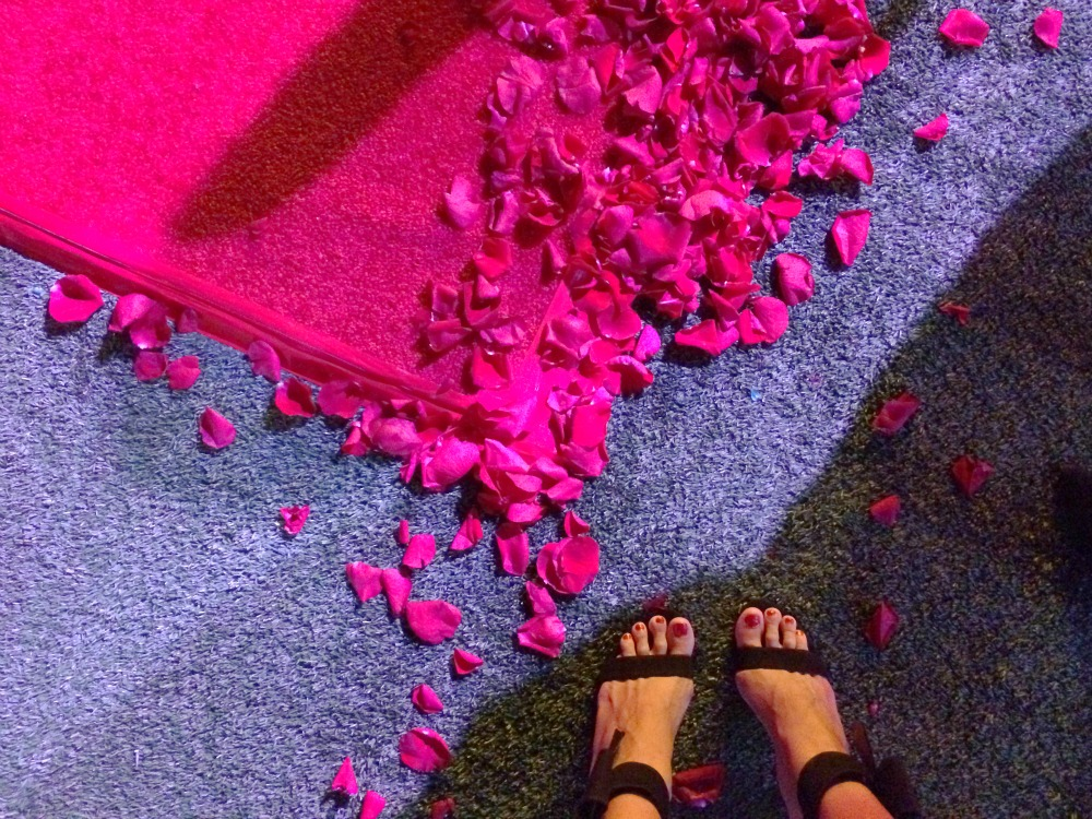 Rose petals on carpet
