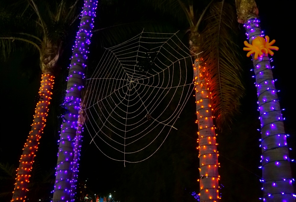 Spiderweb at LEGOLAND California