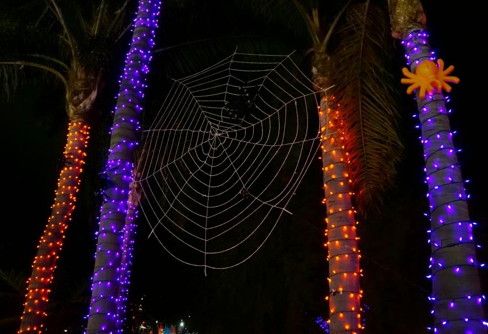 Spiderweb at LEGOLAND California