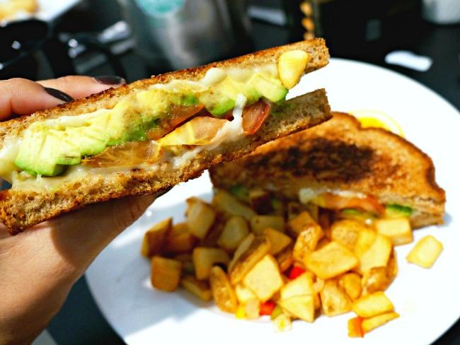 Avocado panini