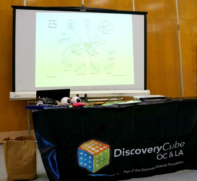 Discovery Cube OC Educational Program