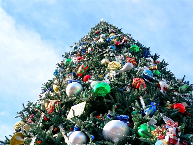 Disneyland celebrating the holidays 2015 // LivingMiVidaLoca.com
