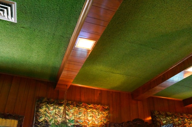 Green shag carpet on ceiling