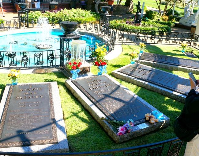 Graceland Meditation garden