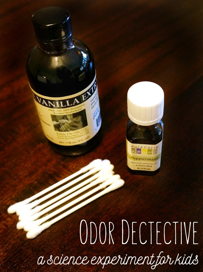 Odor Dectective - a science experiment for kids
