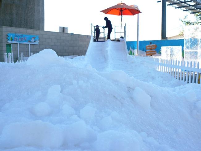 snow sleds for young kids // livingmividaloca.com