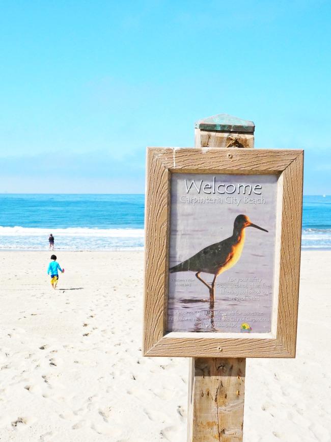 Carpinteria City Beach // LivingMiVidaLoca.com