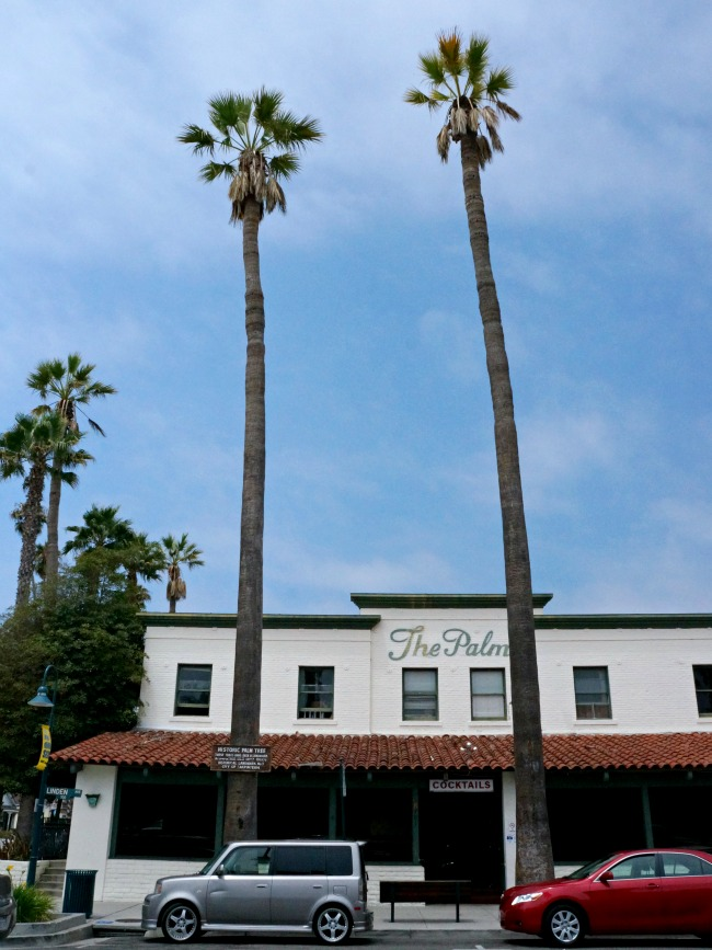 Historic palm trees in Carpinteria // LivingMiVidaLoca.com