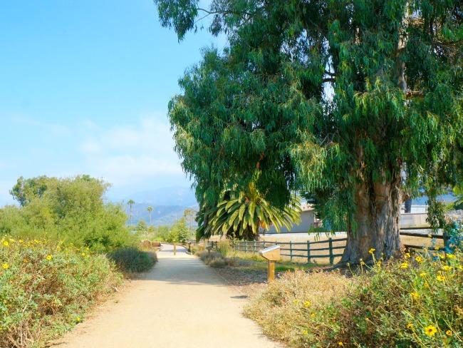 Walking trails in Carpinteria // LivingMiVidaLoca.com