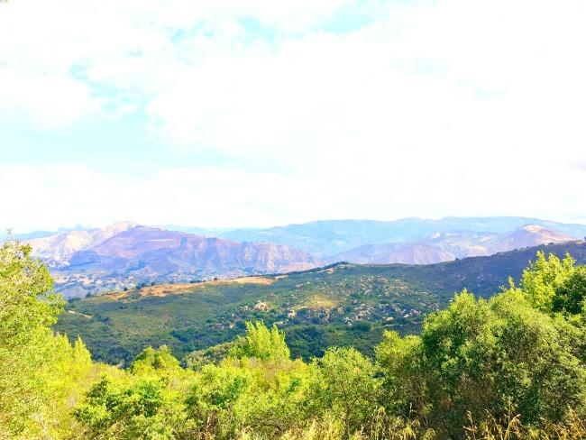 Traveling up Central California on a road trip : LivingMiVidaLoca.com