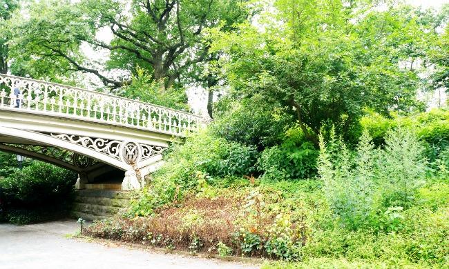 Central Park Bridge - LivingMiVidaLoca.com