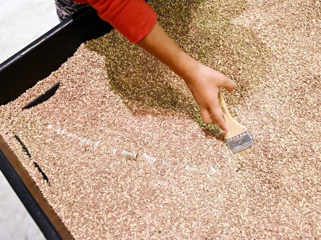 Extreme Dinosaurs fossils at Discovery Cube - LivingMiVidaLoca.com (photo credit: Pattie Cordova)