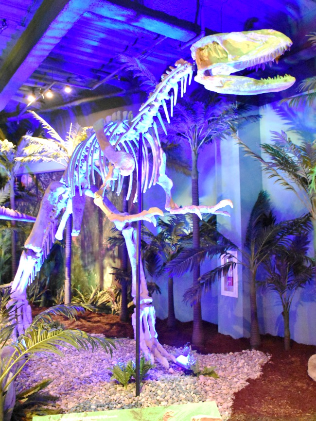 Full size dinosaur skeleton at Extreme Dinosaurs exhibit at Discovery Cube - LivingMiVidaLoca.com (photo credit: Pattie Cordova)