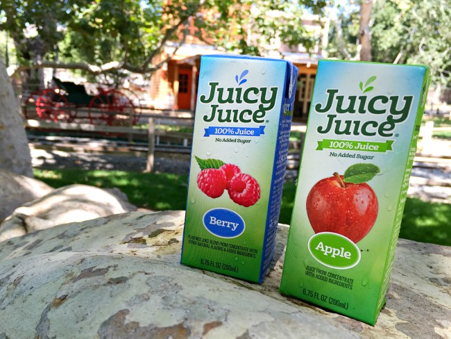 Juicy Juice boxes for birthday party : Ghostbuster Party : LivingMiVidaLoca.com (photo credit: Pattie Cordova)