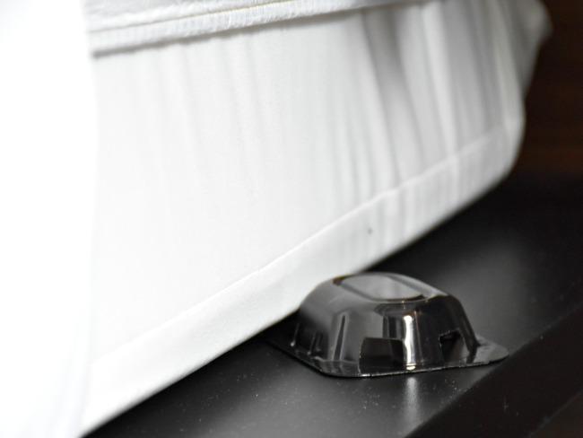 best bed bug traps - livingmividaloca.com