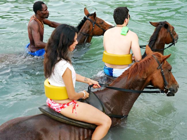montego-bay-horses-jamaica