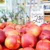 best buys at farmers market - livingmividaloca.com