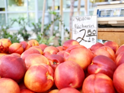 best buys at farmers market - livingmividaloca.com