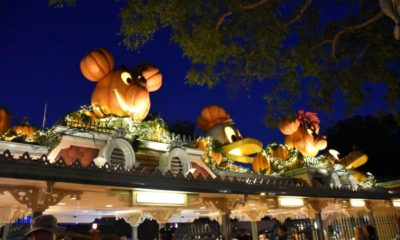 Entrance to Mickey's Halloween Party 2016 - LivingMiVidaLoca.com