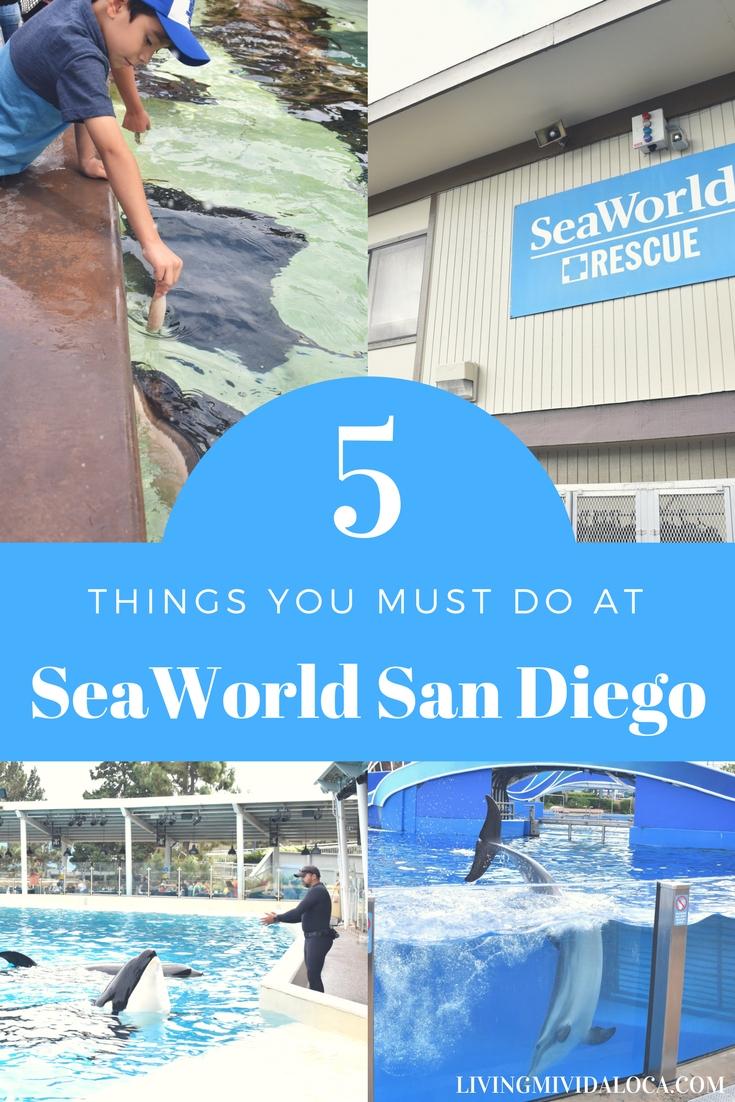 5 Things You Must Do at SeaWorld San Diego - LivingMiVidaLoca.com