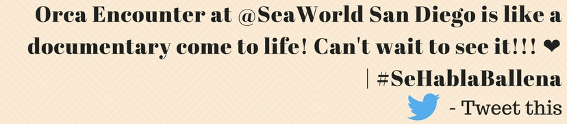 tweet orca encounter