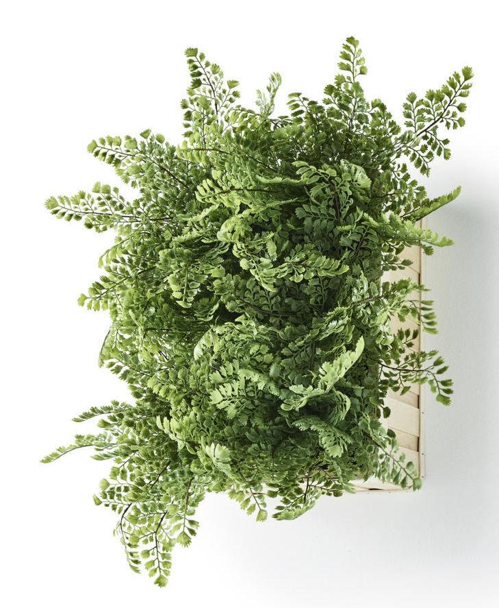wall planter - LivingMiVidaLoca.com