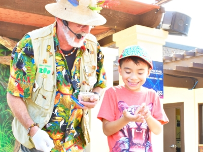 San Diego Zoo Tips for First Time Visitors - LivingMiVidaLoca.com