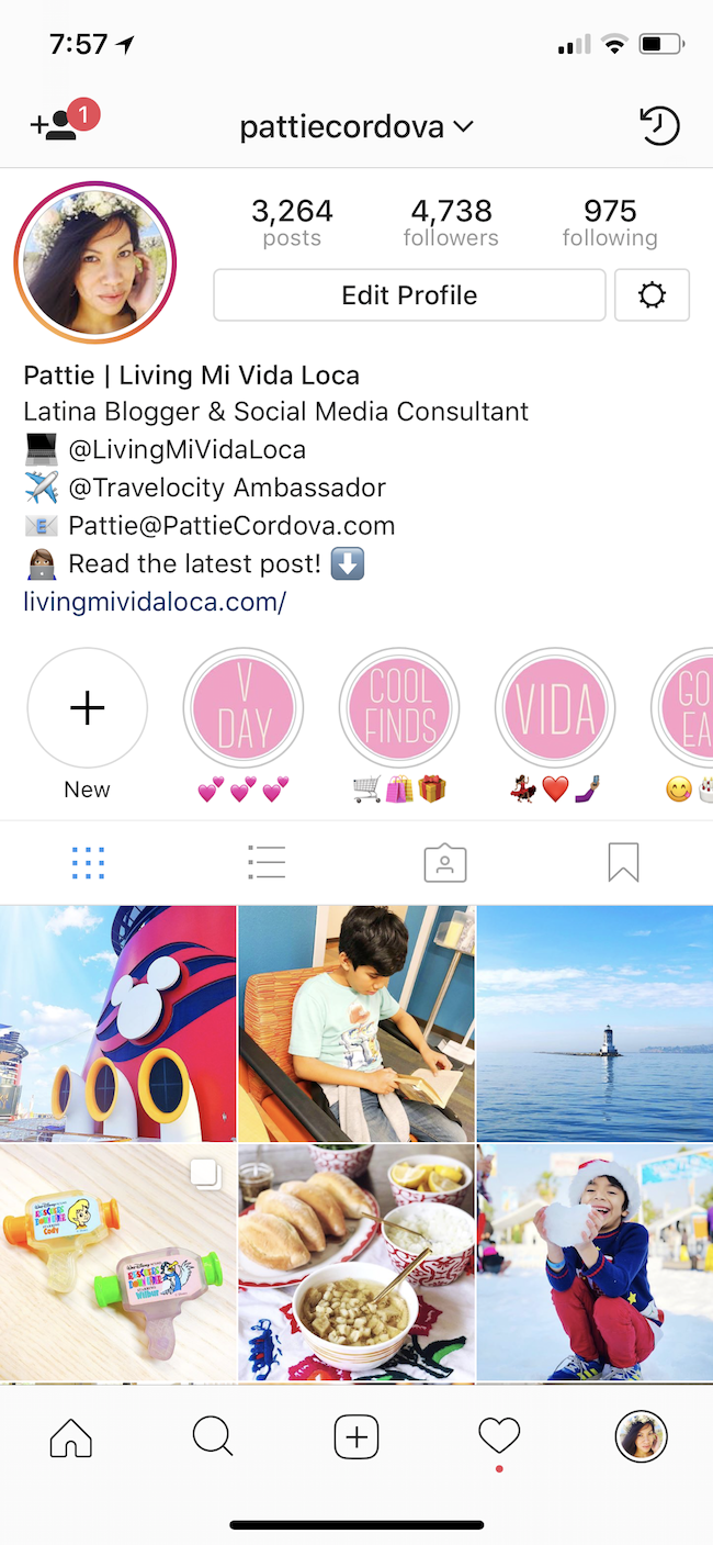 Instagram story highlights on profile - livingmividaloca.com