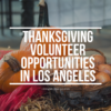 Thanksgiving volunteer opportunities in Los Angeles | LivingMiVidaLoca.com | #ThanksgivingVolunteer #Volunteering #GivingBack #LivingMiVidaLoca #LosAngelesVolunteers