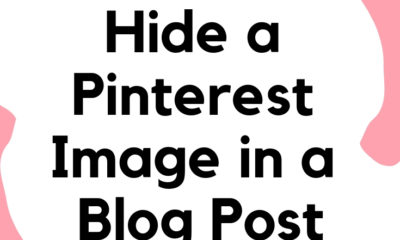 How to hide a Pinterest Image in a blog post - livingmividaloca.com - #LivingMiVidaLoca #PinterestTips #PinterestBlog