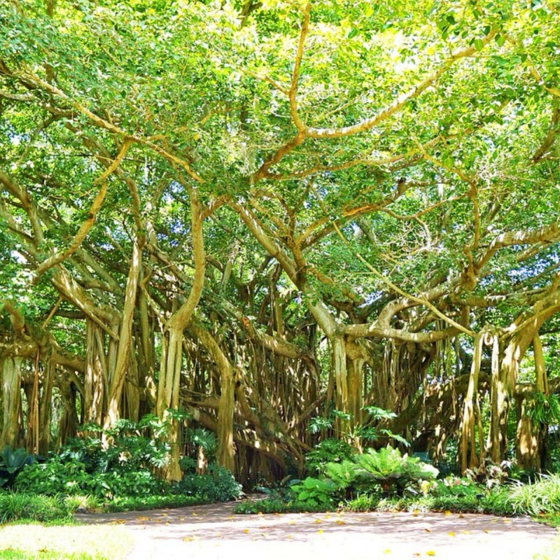 LEGOLAND Florida - livingmividaloca.com - #LivingMiVidaLoca #LEGOLANDFlorida #FamilyTravel