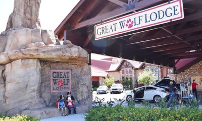 Great Wolf Day Passes are now available, starting at $55 each. This is everything you need to know about the new day passes at Great Wolf Lodge.