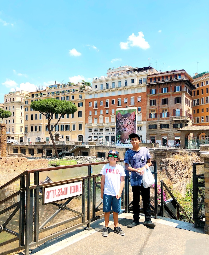 The Torre Argentina Cat Sanctuary in Rome is open to the public. - livingmividaloca.com - #Gnomads #Travel