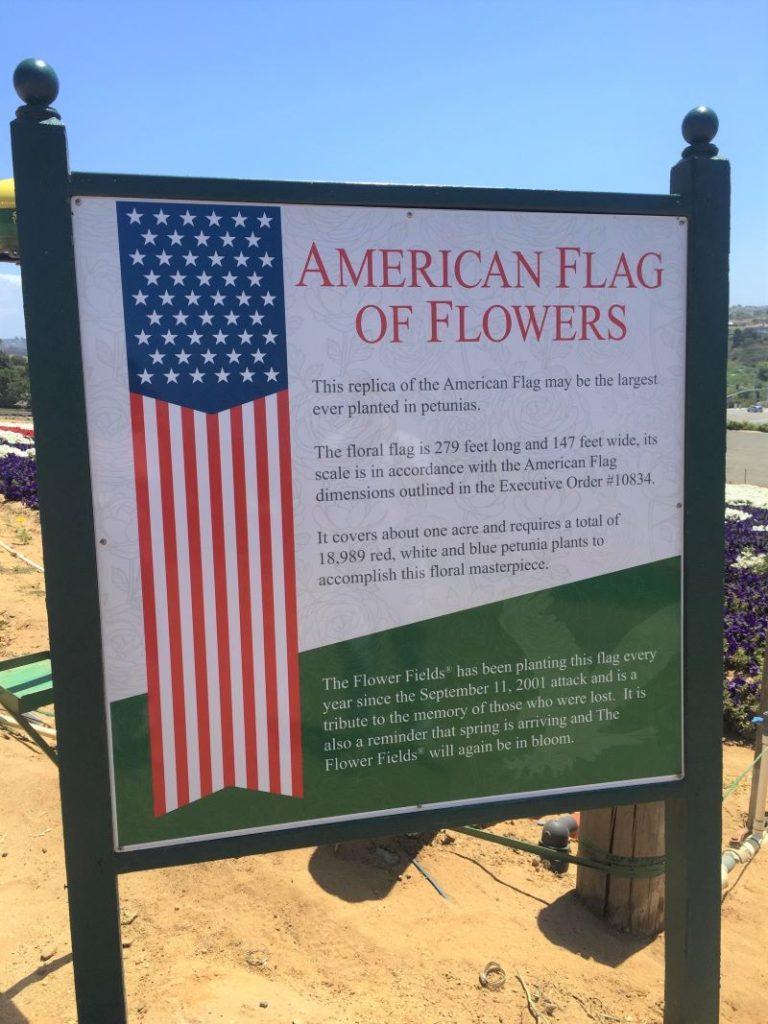 American flag of flowers at Carlsbad Flower Fields
