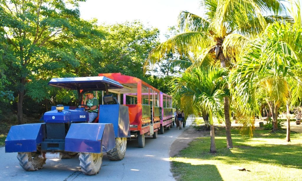 What to expect in transportation in Tulum for the first time. - livingmividaloca.com