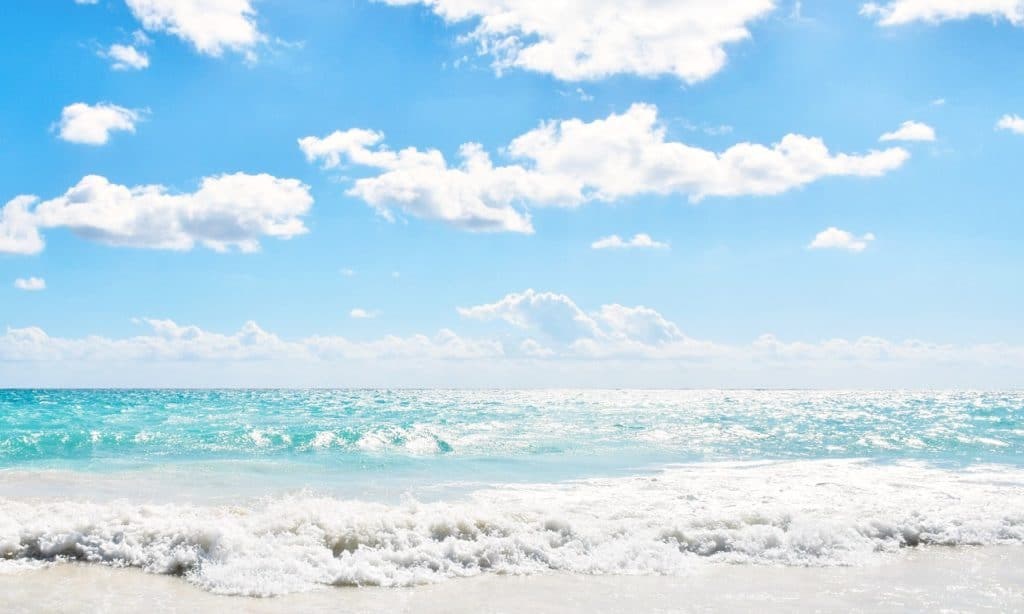 What to expect when visiting the beach in Tulum for the first time. - livingmividaloca.com