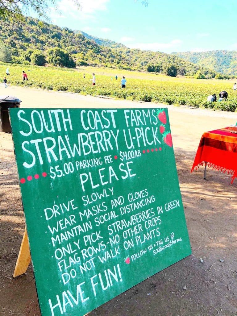 South Coast Farms rules on Ortega Highway - livingmividaloca.com